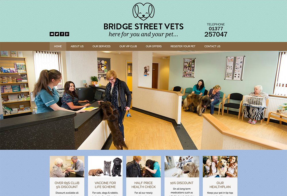 Website design for Driffield based Vets